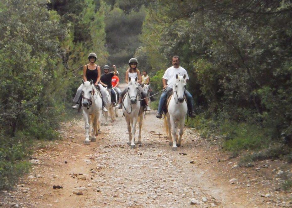 Promenade à cheval, à Frontignan Plage, locations de vacances, les deux rives