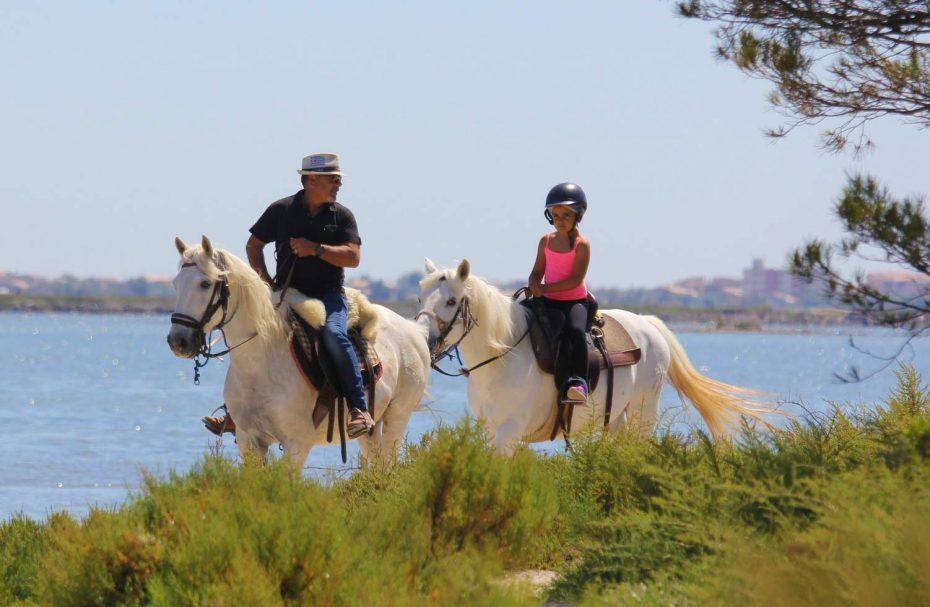 Promenade à cheval Frontignan plage