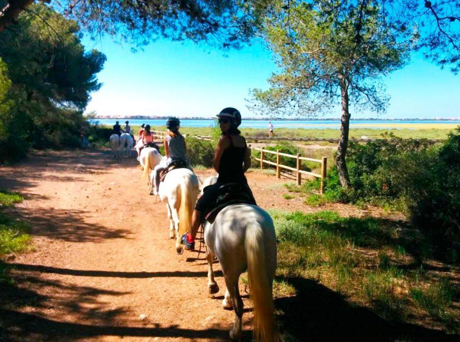 A cheval aux Aresquiers à Frontignan Plage