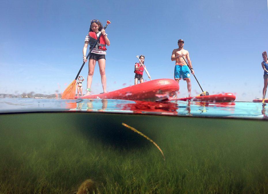 Stand Up Paddle sur l'étang d'Ingril à Frontignan plage