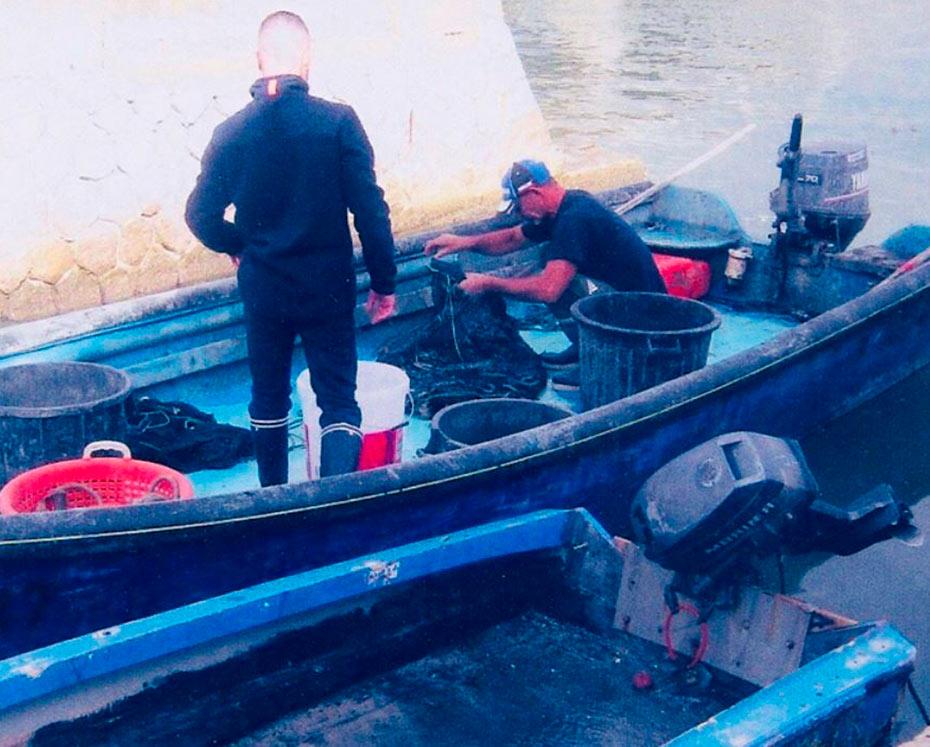 Arrivage des poissons par barque à la Perle d'Ingril, à Frontignan